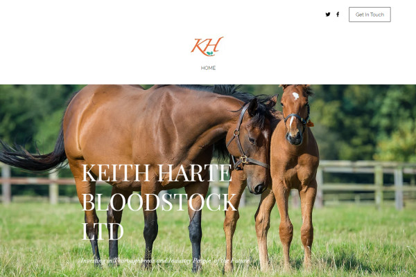 Thoroughbred Bloodstock